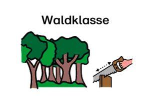 f-a6-waldklasse